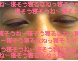 20101130114851.jpg
