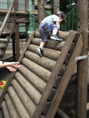 丸太の急斜面2