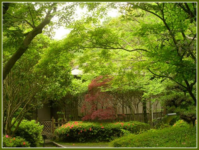 「黎明館」裏の庭園