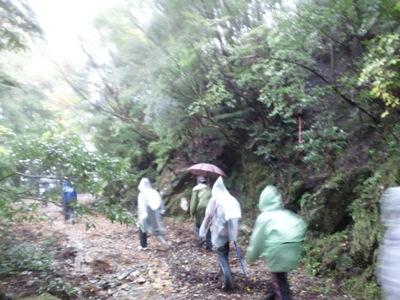 20111119-1120第8回おわせ海、山ツーデーウォーク (7)