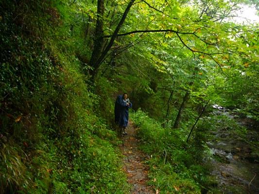 20090920サンジャンピエードポー~イパニェタ峠~ロンセスバリェス (10)