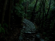 みちびとのたわ事?A diary of route journey?-P1030618.jpg