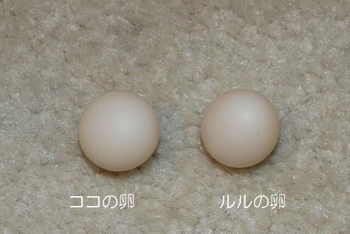 ココとルルの卵1