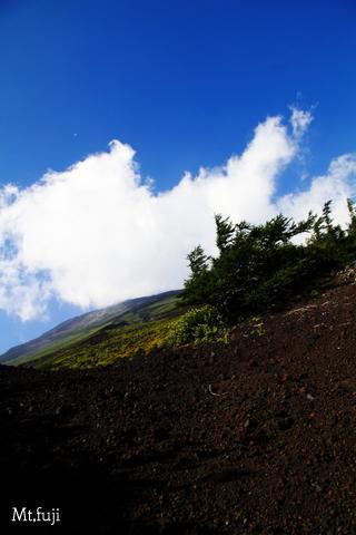 富士山0302