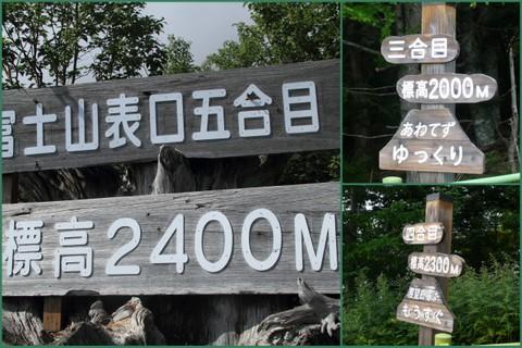 2010_08_253.jpg