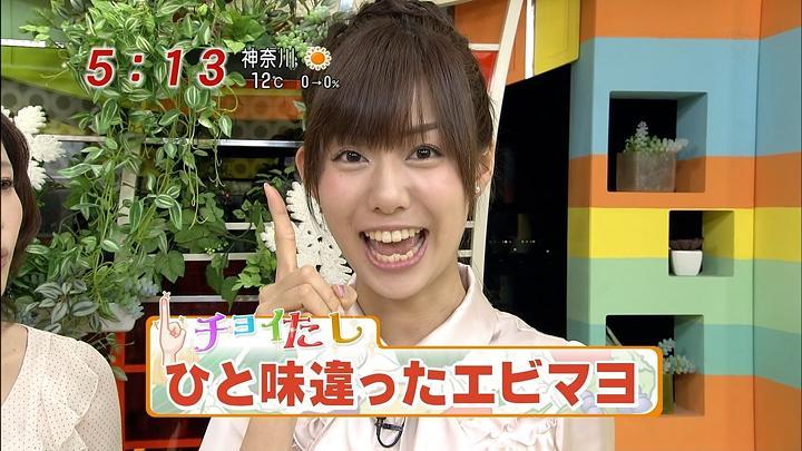 yamap20110203_04.jpg