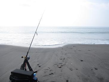週末の釣果です