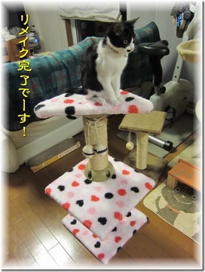 猫タワーリメイク完了です