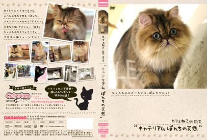 TACAT-007L_20100608200350.jpg