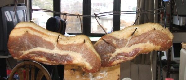 bacon5.jpg