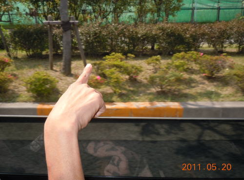 8_20110521022256.jpg