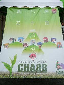 akiba5.jpg