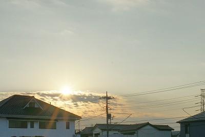 20101127 (12)
