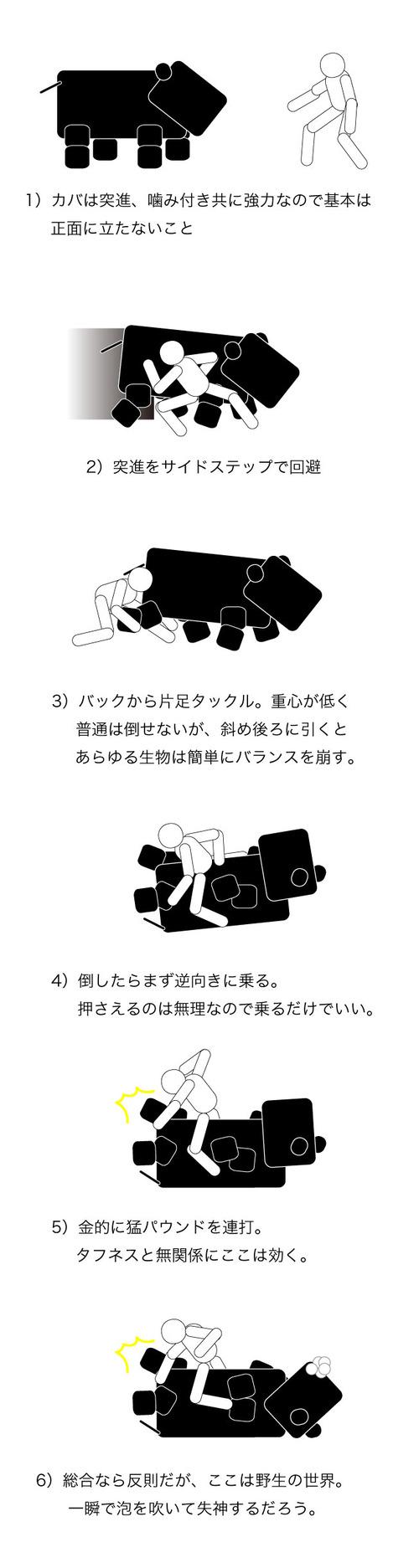 171_3.jpg