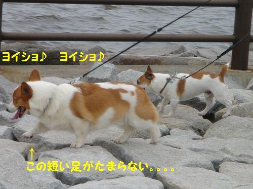20100711_2