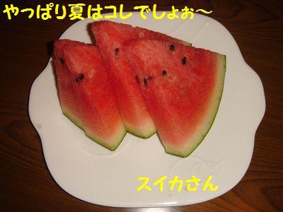 20100805_01