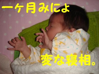 20101105_1