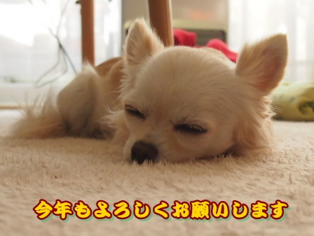 blog3075.jpg