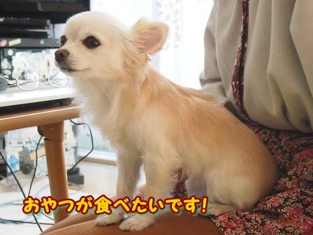 blog3264a.jpg