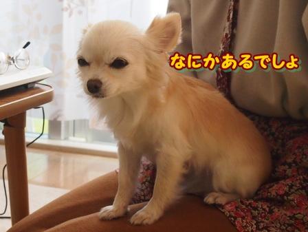 blog3266a.jpg