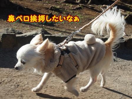blog3281b.jpg