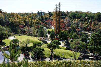 日本庭園の周り