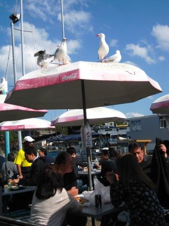 fishmarket (3)