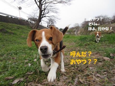 021_20120321070706.jpg