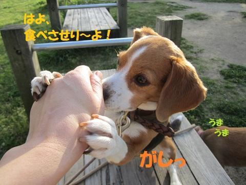 022_20120501211350.jpg