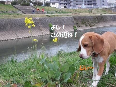 023_20120321070708.jpg