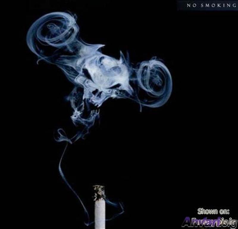 煙草 画像