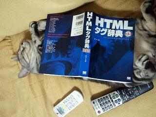 NEC_0563.jpg