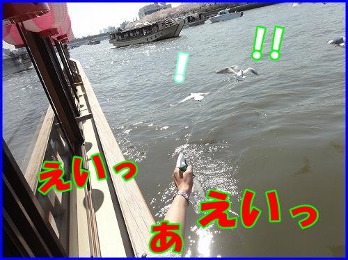 DSC00055_20120409233822.jpg