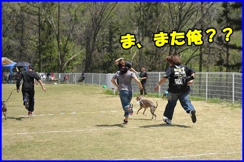 DSC_0111_20120501223036.jpg