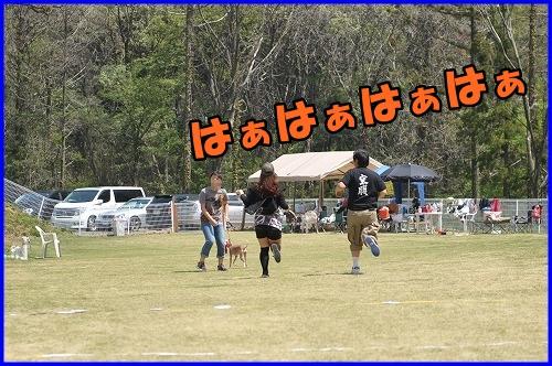 DSC_0131_20120501223122.jpg