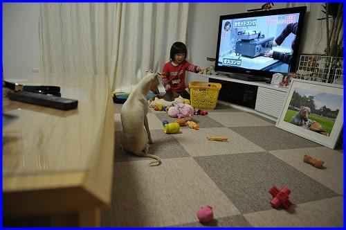 DSC_9949_20120422114953.jpg
