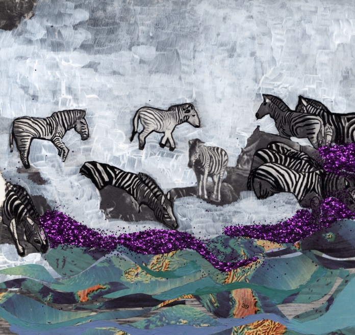 zebra collage nat ale