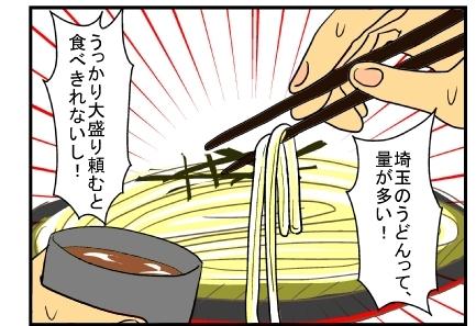 埼玉のうどん10