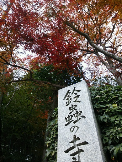 kyotonoichou.jpg