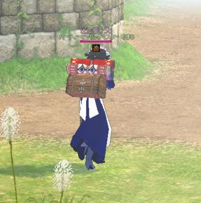 背負い荷物2