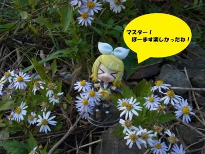 blog_20111121195511.jpg