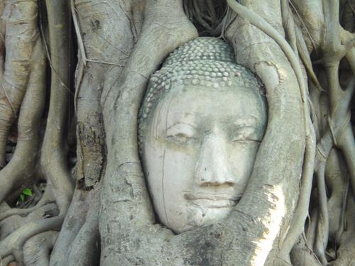2014Nobember-Thailand-155.jpg