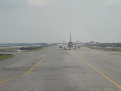 2014Thai_Aieways_A330-300-14.jpg