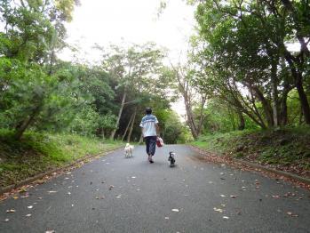 ちびもえ2011.09伊豆 104