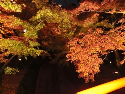 141125_北野天満宮ライトアップ11