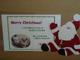 ChristmasTreeが届いたよ~5