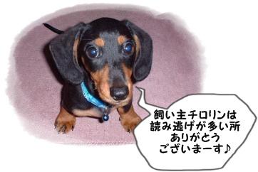 koro_convert_21_20120110223139.jpg