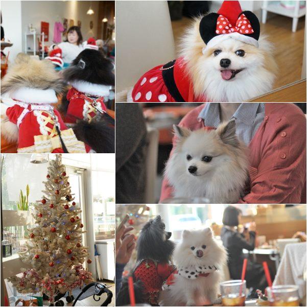 クリスマスパーティ19 13-12