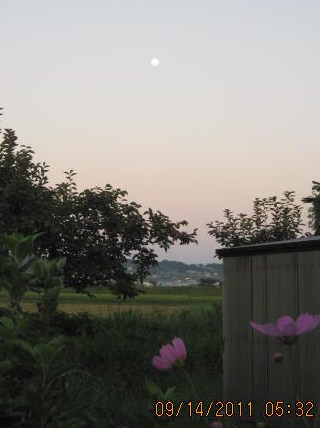 西の空に残月