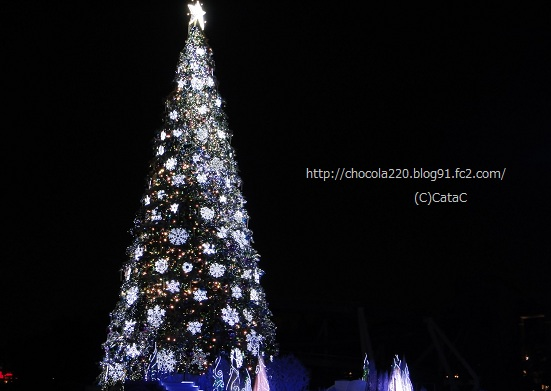 DSC00699_20111127181507.jpg